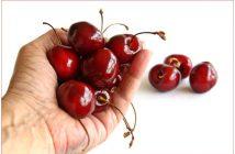 Eine Hand voll Kirschen. Foto: pixelio
