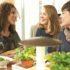 Probelauf: Vapiano testet Bedienkonzept