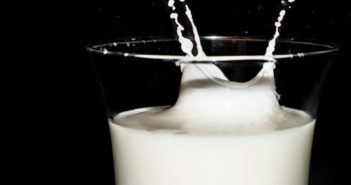 Infobroschüre mit Fakten zur Milch