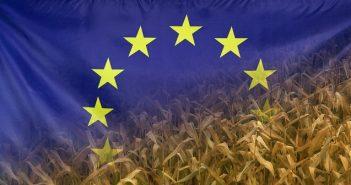 Lebensmittelwirtschaft fordert klares Bekenntnis zu Europa