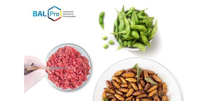 Verband für Alternative Proteinquellen gegründet